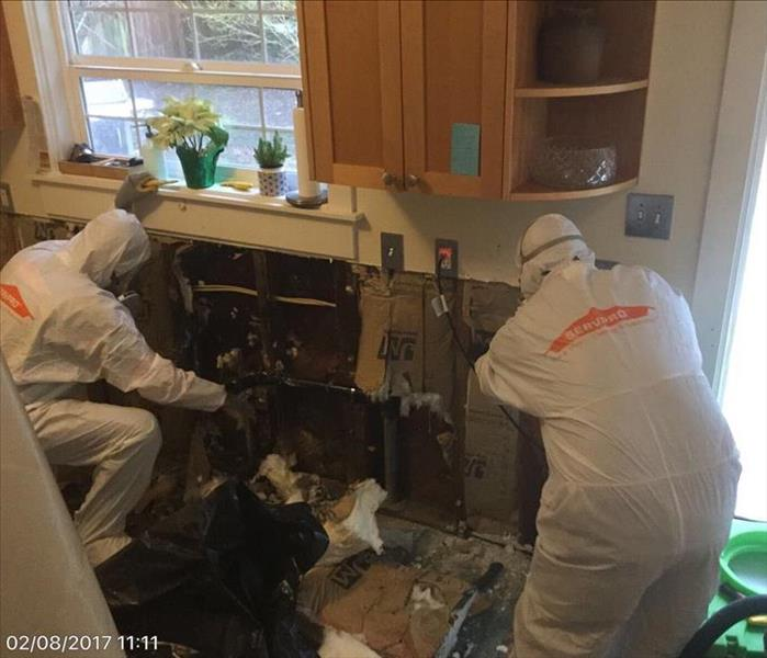 Mold Remediation We will do what it takes to get to the source