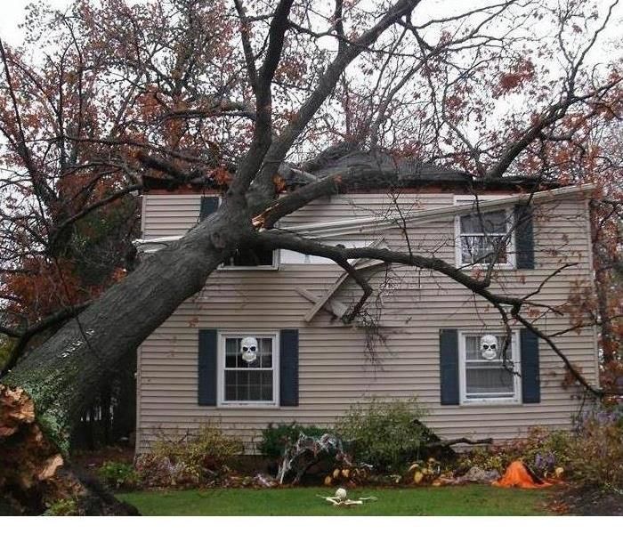 Storm Damage Tree Topples Home