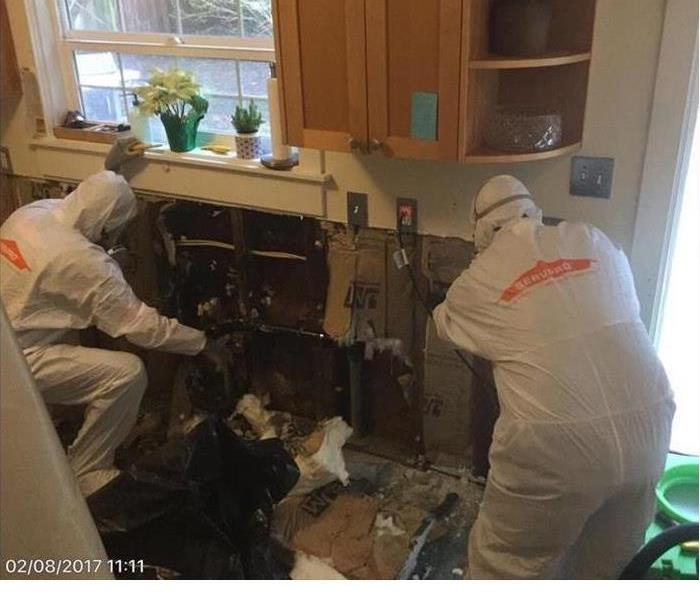 Mold Remediation Men in White